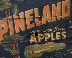Pineland Washington State Apples sign